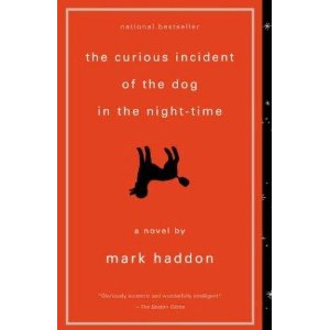 Review of The Curious Incident of the Summer Reading Selection